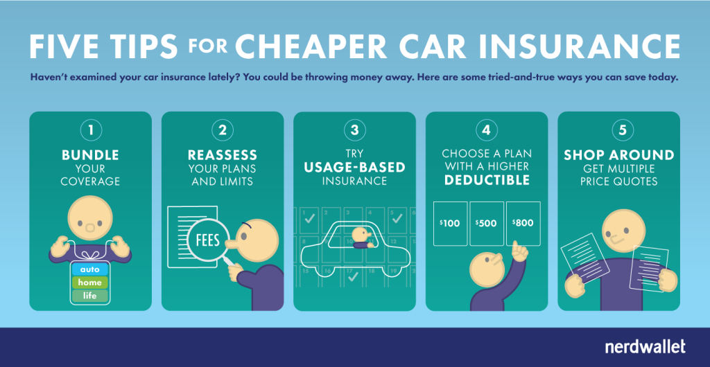 Faq - The Basics of Car Insurance: A step by Step Guide